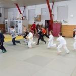 20190323_155810_Judo-Safari_IMG_7297