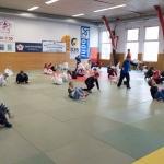 20190323_160015_Judo-Safari_IMG_7304