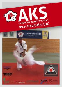 AKS_A6_2015_v2_RZ_web